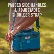 soft cooler has padded side handles and adjustable shoulder strap image number 4