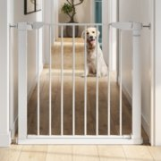 baby steps premium walk thru safety gate with dog in the background image number 4