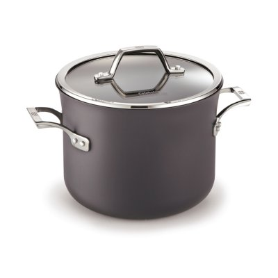 Calphalon Williams-Sonoma Elite Hard-Anodized Nonstick 6-Quart Stock Pot with Cover