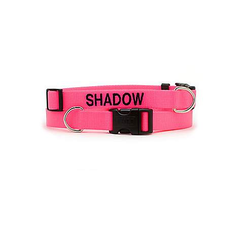 Coastal Pet Personalized Adjustable Nylon Tuff Collars in Neon Pink
