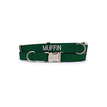 Coastal Pet Personalized Adjustable Nylon Spectra Collar in Hunter Green