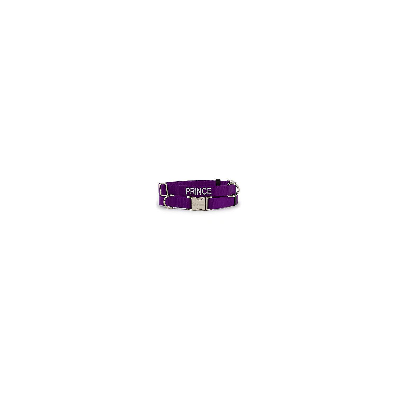 Coastal Pet Personalized Adjustable Nylon Spectra Collar In Purple 1 Width Xx Large