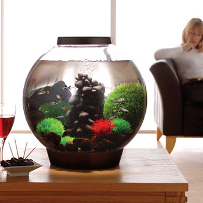 Biorb Black Aquarium Kit With Light