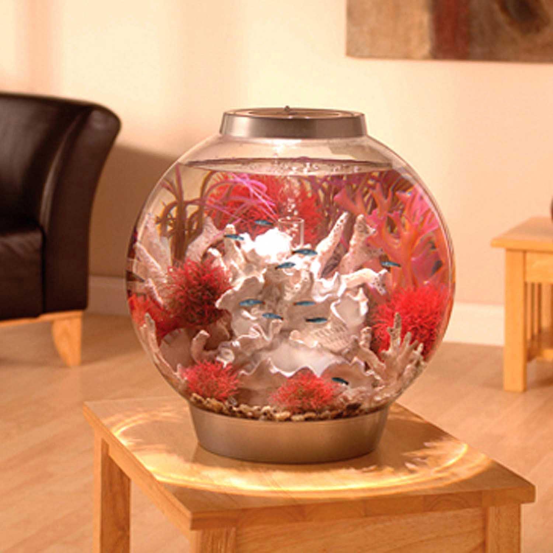 Biorb silver aquarium kit with light petco for Petco fish supplies