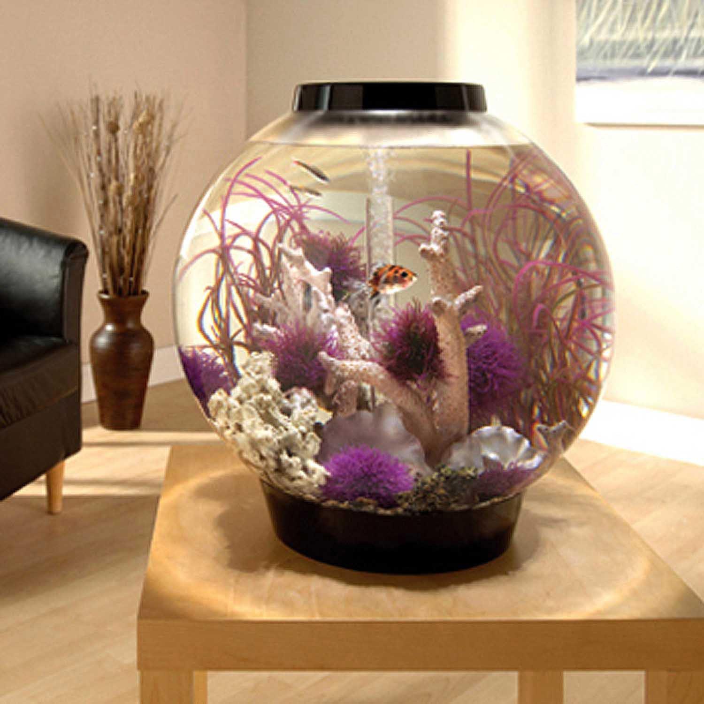 Biorb Black Mega Aquarium Kit With Light Petco