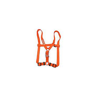 Coastal Pet Personalized Harness in Sunset Orange