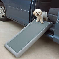 Dog Car Accessories Dog Travel Accessories For Cars Petco