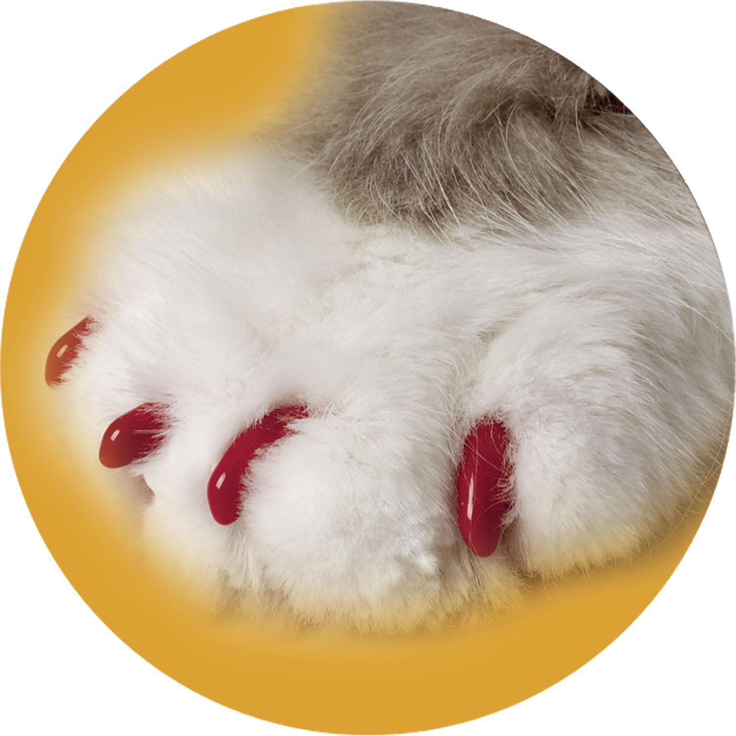 Soft Claws Clear Cat Nail Caps | Petco