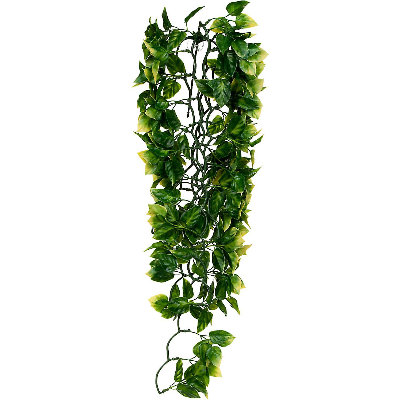 Exo Terra Amapallo Jungle Plant Large Green
