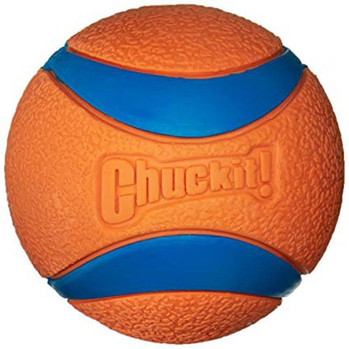 Dog Toys Balls : Chuckit ultra ball dog toy petco