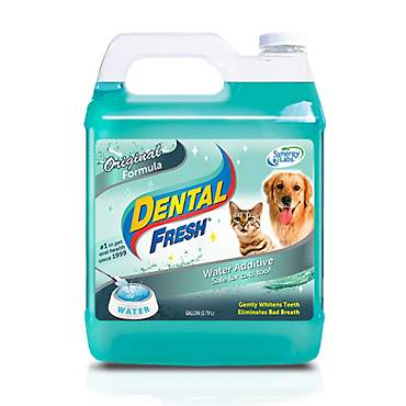 Dental Fresh for Dogs & Cats