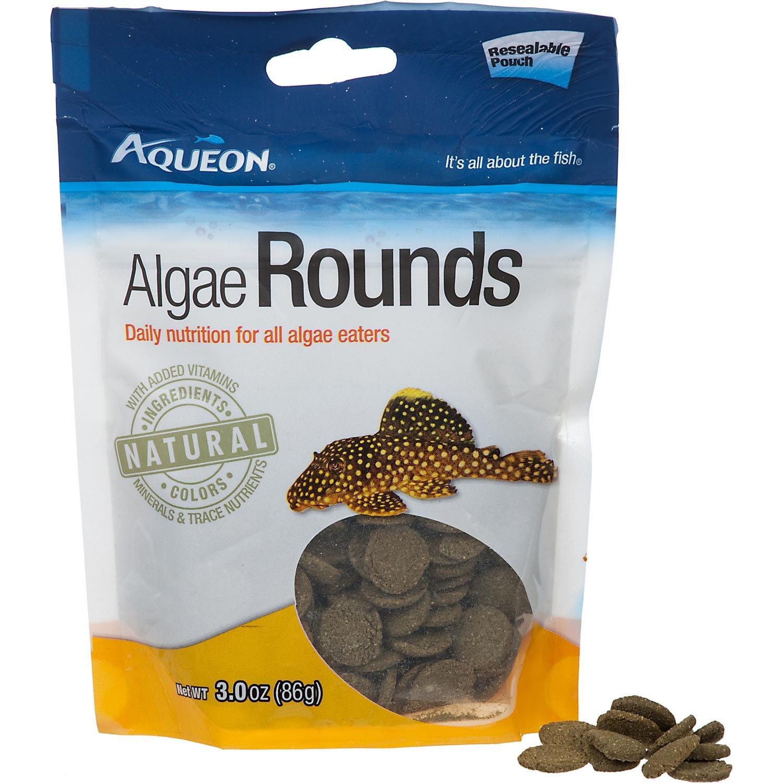 Aqueon algae rounds algae eater fish food petco for Petco fish food