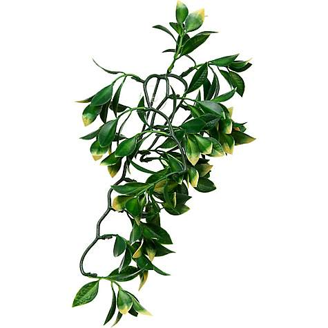 Exo-Terra Mandarin Jungle Plant, 12