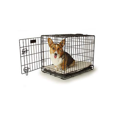 Petco Classic 1 Door Dog Crate 24 L X 18 X 19 H Petco