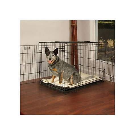 Petco Premium 2 Door Dog Crates