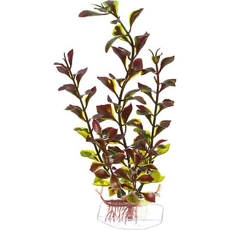 Imagitarium Red & Green Ludwigia Plastic Aquarium Plant