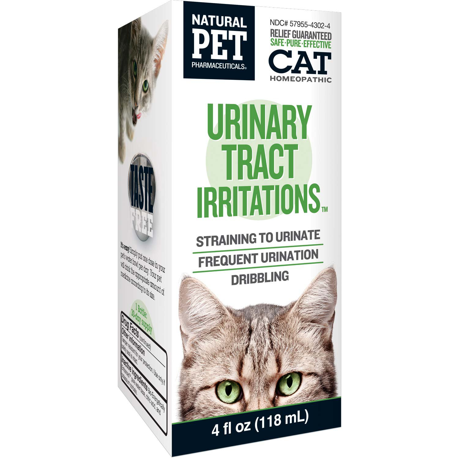 Cat Urinary Infection Natural Treatment