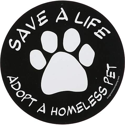 Imagine This Save A Life Adopt A Homeless Pet Car Magnet