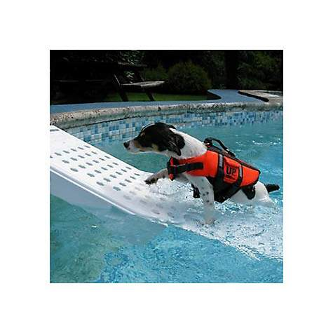 Gamma Super Skamper Ramp Pool Ramp for Pets