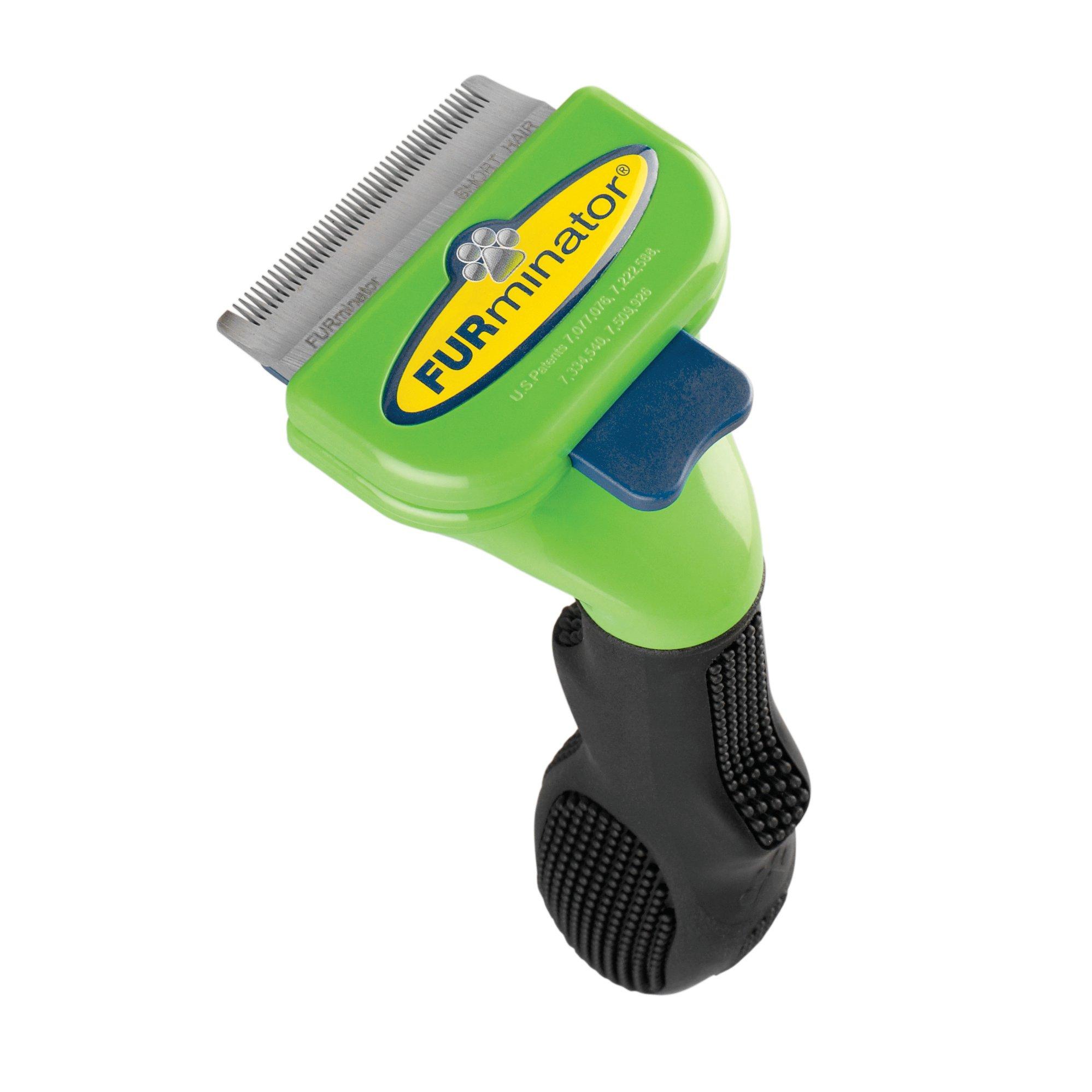 Short Hair Dog Grooming Tools