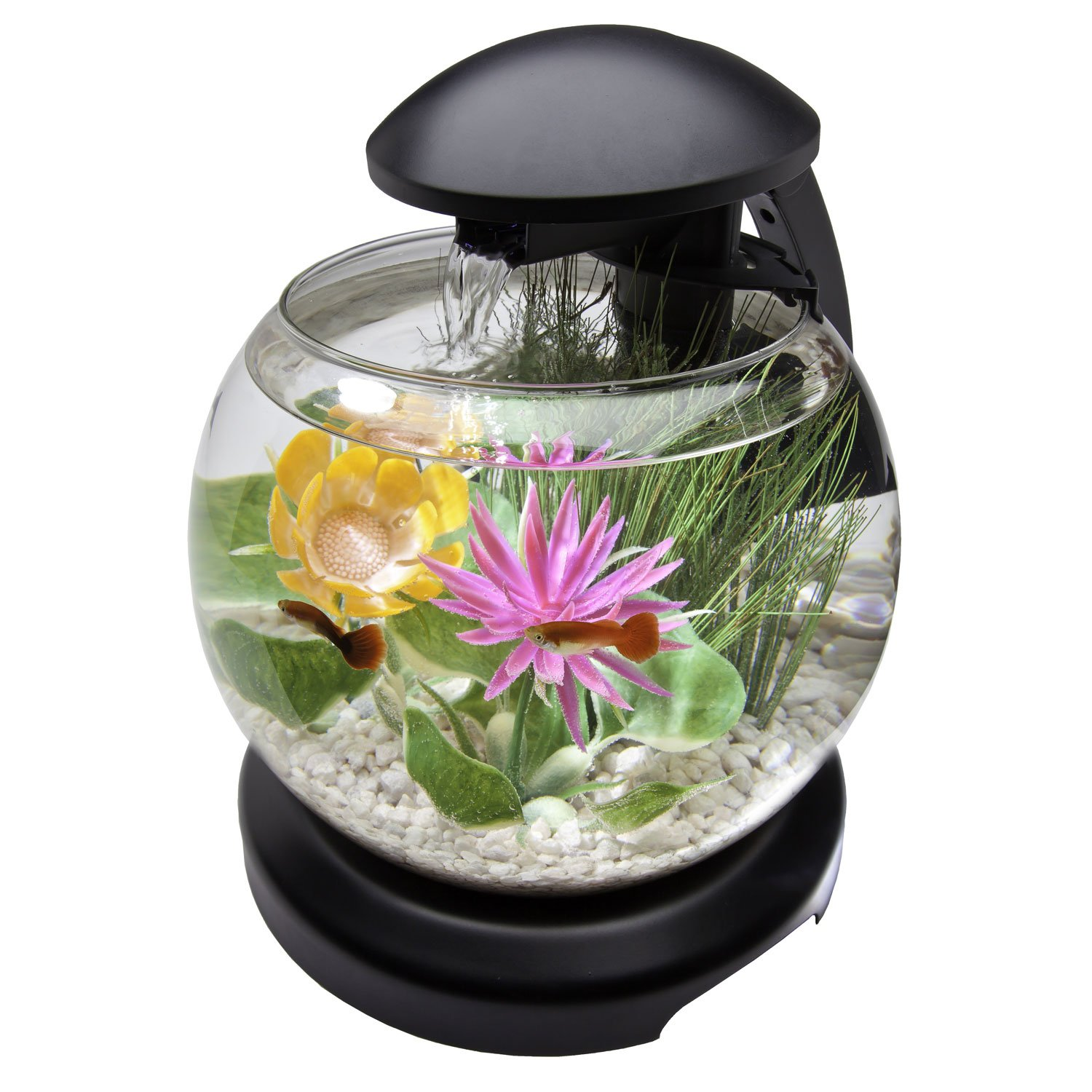 Tetra 1 8 Gallon Waterfall Globe Aquarium Kit
