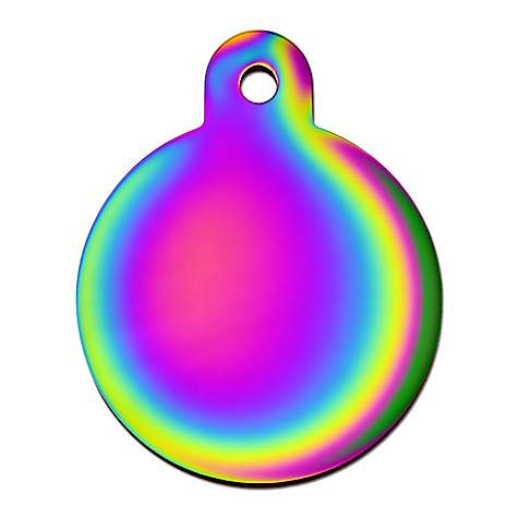 Quick-Tag Rainbow Circle Personalized Engraved Pet ID Tag, Large