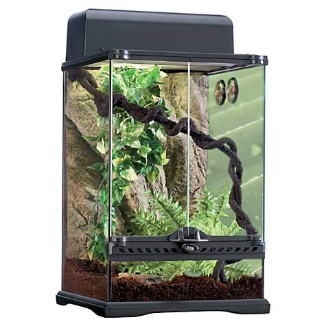 Exo Terra Rainforest Reptile Glass Terrarium Kit Petco