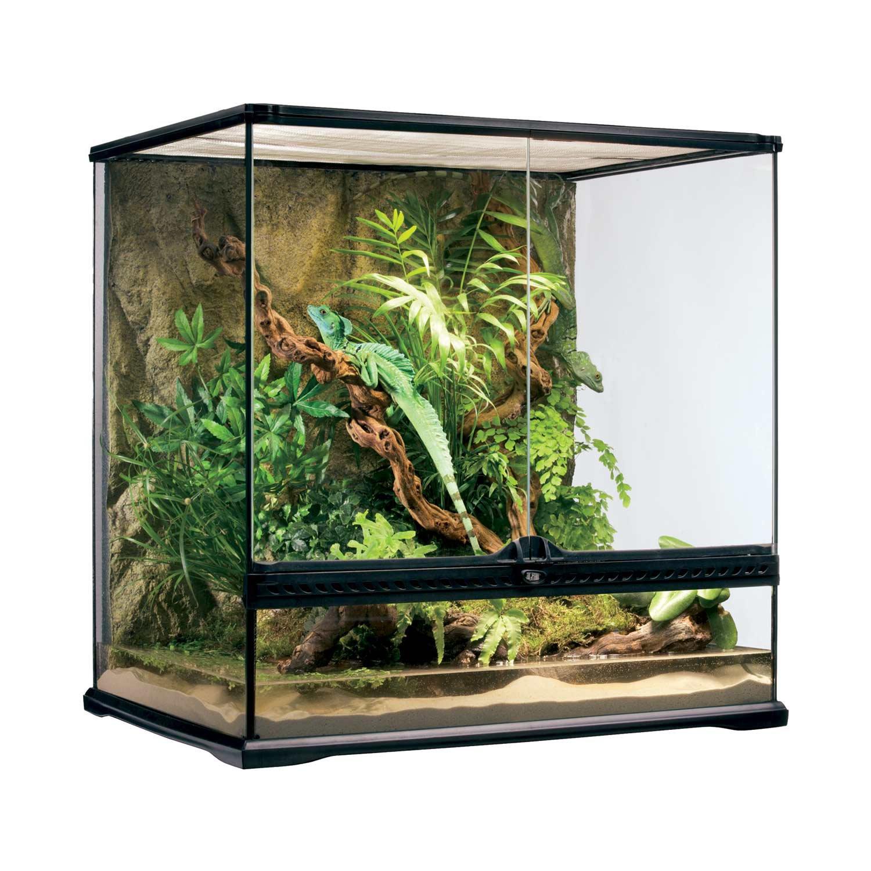 Exo Terra Med Tall Terrarium, 24'x18'x24' - Reptile Terrariums & Cages Reptile Tanks & Enclosures Petco