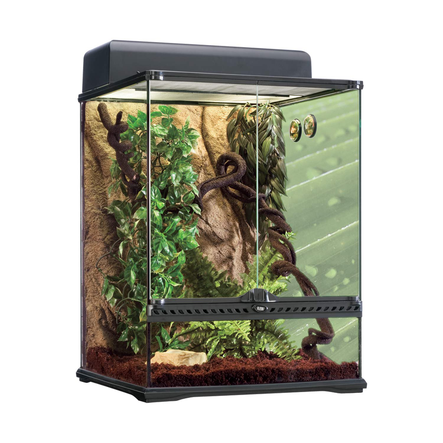 exo terra rainforest reptile glass terrarium kit petco. Black Bedroom Furniture Sets. Home Design Ideas