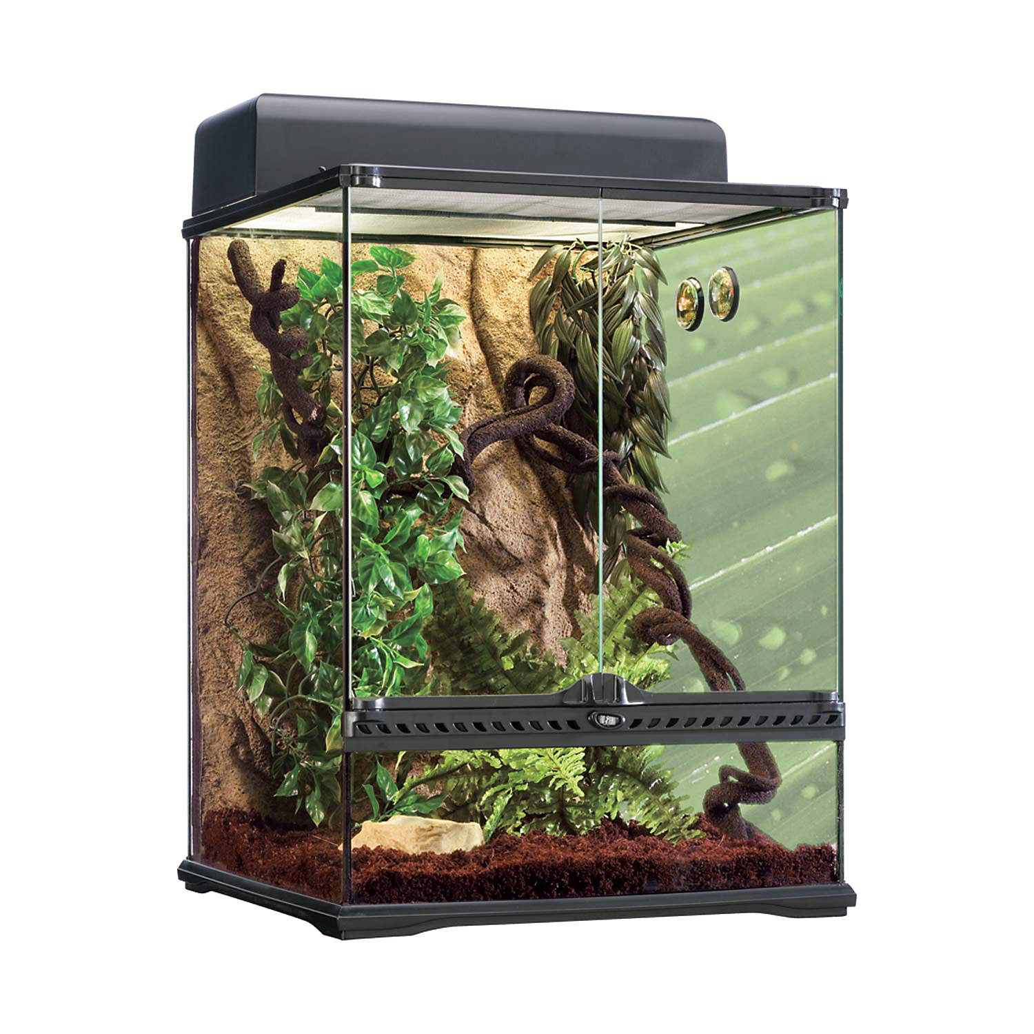 Exo Terra Rainforest Reptile Terrarium Kit Medium