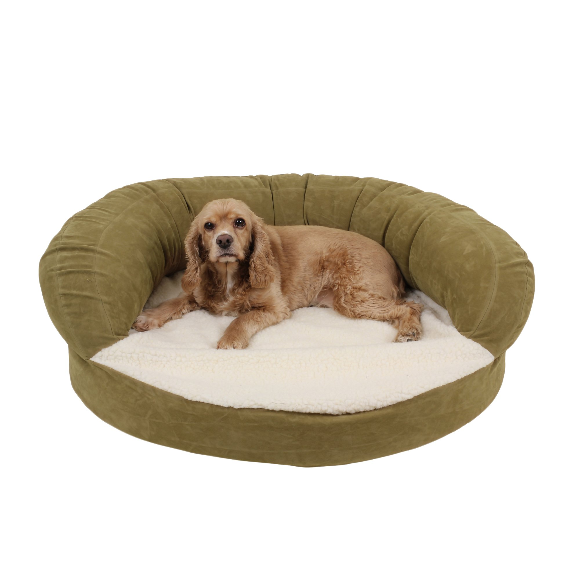 orthopedic dog beds: best orthopedic beds for dogs | petco