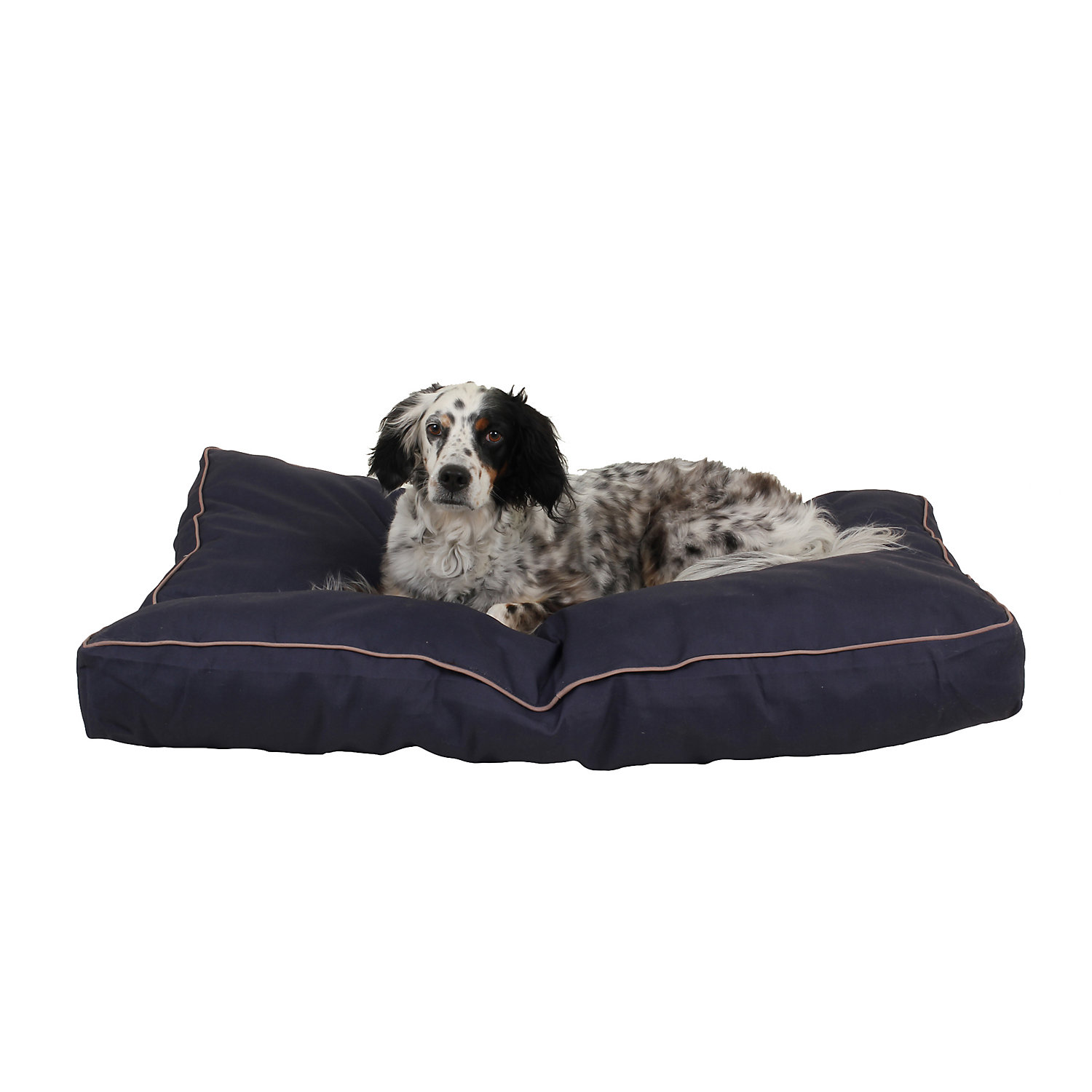 "Carolina Pet Company Indoor Outdoor Jamison Blue Faux Gusset Dog Bed, 42"" L X 30"" W X 4"" H, Medium"