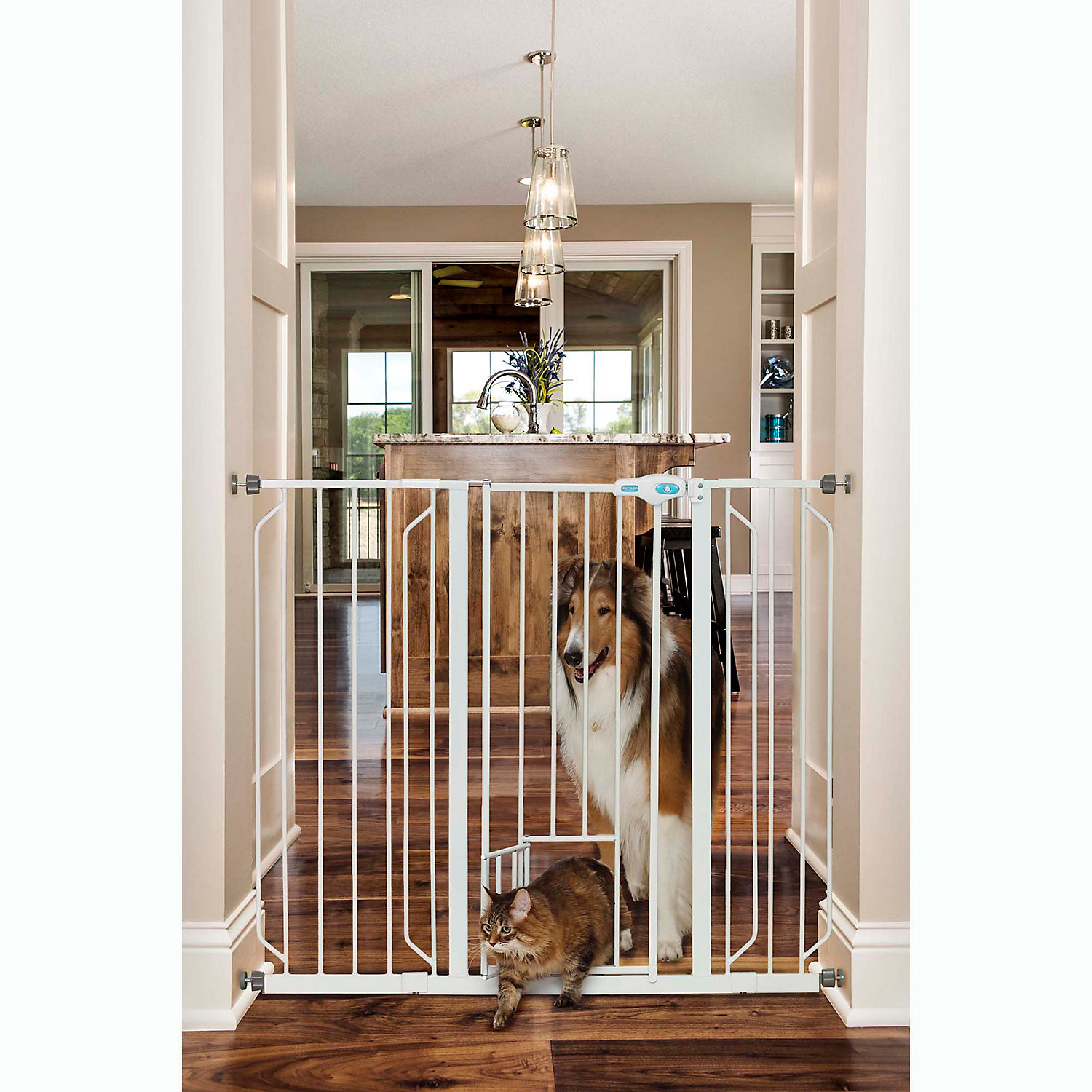 Upc 891618001752 Carlson Pet Products Extra Tall