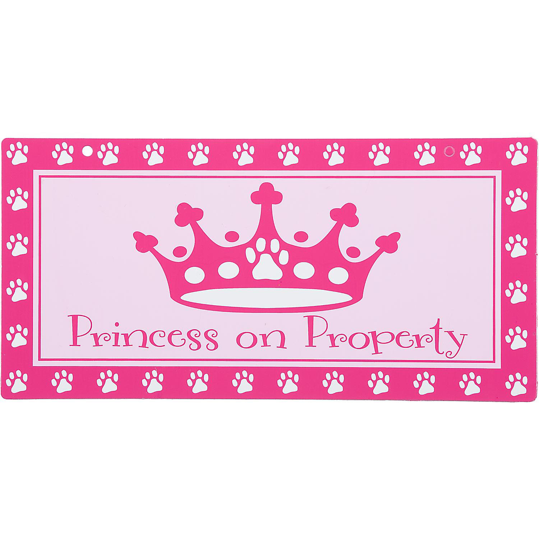Hillman Sign Center Princess On Property 10 L X 5 H