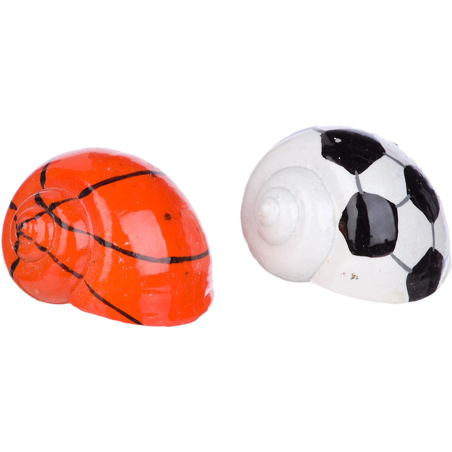 Image of Conceptual Creations Hermit Crab Sports Shells, Pack of 2 shells