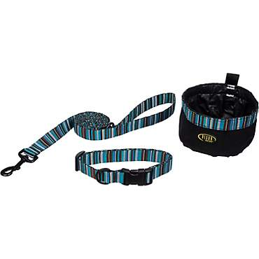 Bison Pet Dog 3-Piece Set in Turqouise Stripes