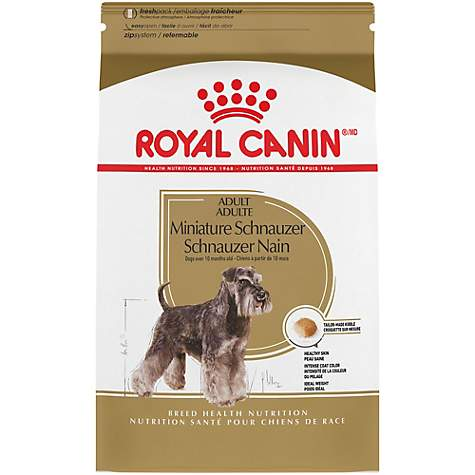 royal canin breed health nutrition miniature schnauzer adult dry dog food petco. Black Bedroom Furniture Sets. Home Design Ideas