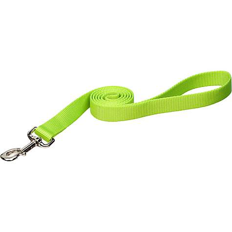 Coastal Pet Nylon Personalized Dog Leash in Lime, 5/8