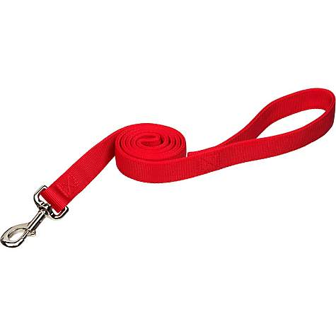 Coastal Pet Double Ply Nylon Personalized Dog Leash in Red