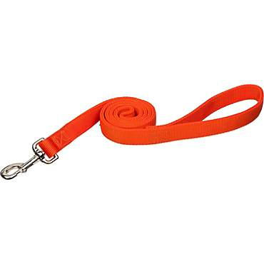 Coastal Pet Double Ply Nylon Personalized Dog Leash in Orange