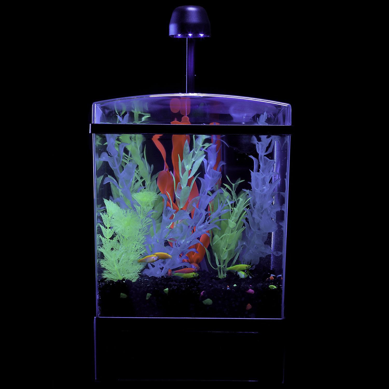 Glofish 1.5 Gallon Aquarium Kit 7.5 L X 8.25 W X 12.75 H