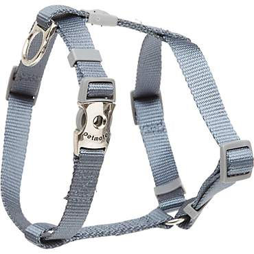 Aspen Pet by Petmate Deluxe Signature Pewter Single Ply Nylon Dog Harness