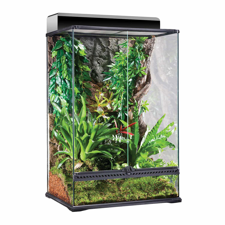 Exo Terra High Glass Terrarium 24 L X 18 W X 36 H