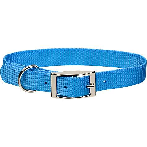 Coastal Pet Metal Buckle Nylon Personalized Dog Collar in Light Blue, 5/8