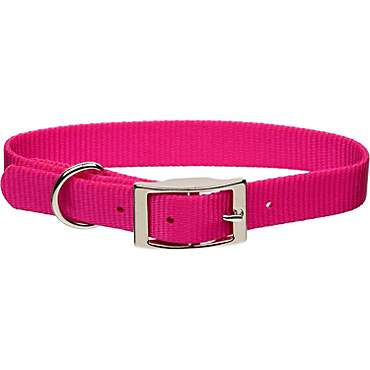 Coastal Pet Metal Buckle Nylon Personalized Dog Collar in Pink Flamingo, 1