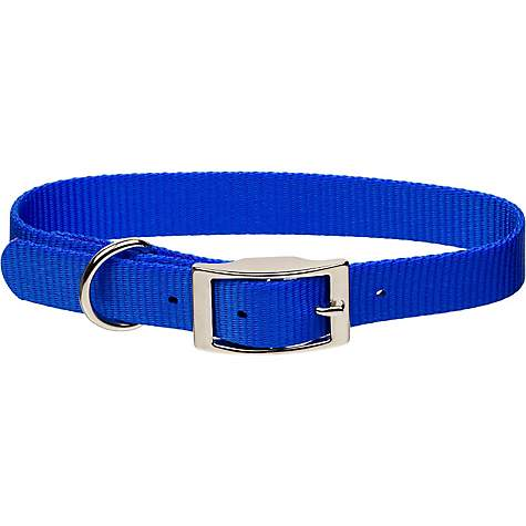 Coastal Pet Metal Buckle Nylon Personalized Dog Collar in Blue, 3/4