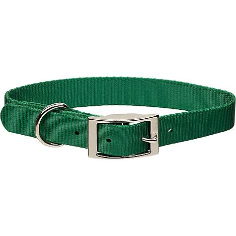 Coastal Pet Metal Buckle Nylon Personalized Dog Collar in Hunter, 3/8