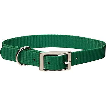 Coastal Pet Metal Buckle Nylon Personalized Dog Collar in Hunter, 3/4
