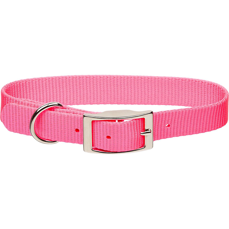 Coastal Pet Metal Buckle Nylon Personalized Dog Collar in Neon Pink, 1