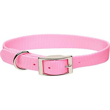 Coastal Pet Metal Buckle Nylon Personalized Dog Collar in Bright Pink, 1